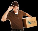 Paczki są wysyłane sprawdzonymi firmami kurierskimi : DPD, DHL i UPS